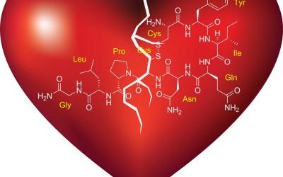Oxitocina, la hormona de las 'supermadres'