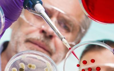 El 'Bacillus F'  EL ELIXIR DE LA VIDA ETERNA – UNA BACTERIA DE 3,5 MILLONES DE AÑOS