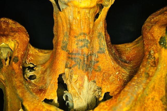 Una momia cubierta de tatuajes