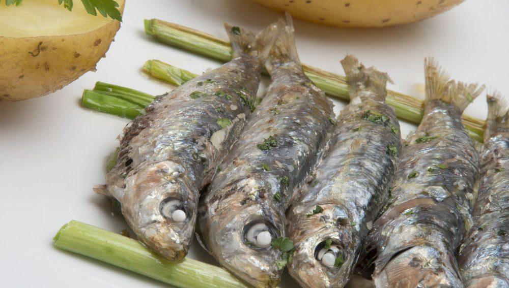 100 gramos diarios de sardina son buenos para los diabéticos y previene las enfermedades cardiovasculares