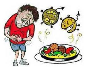 El 60% de las intoxicaciones alimentarias se producen en verano