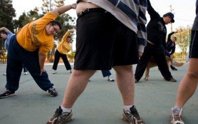 Suprimir la miostitina o  Una píldora para  sustituir al ejercicio físico y reduzca la obesidad