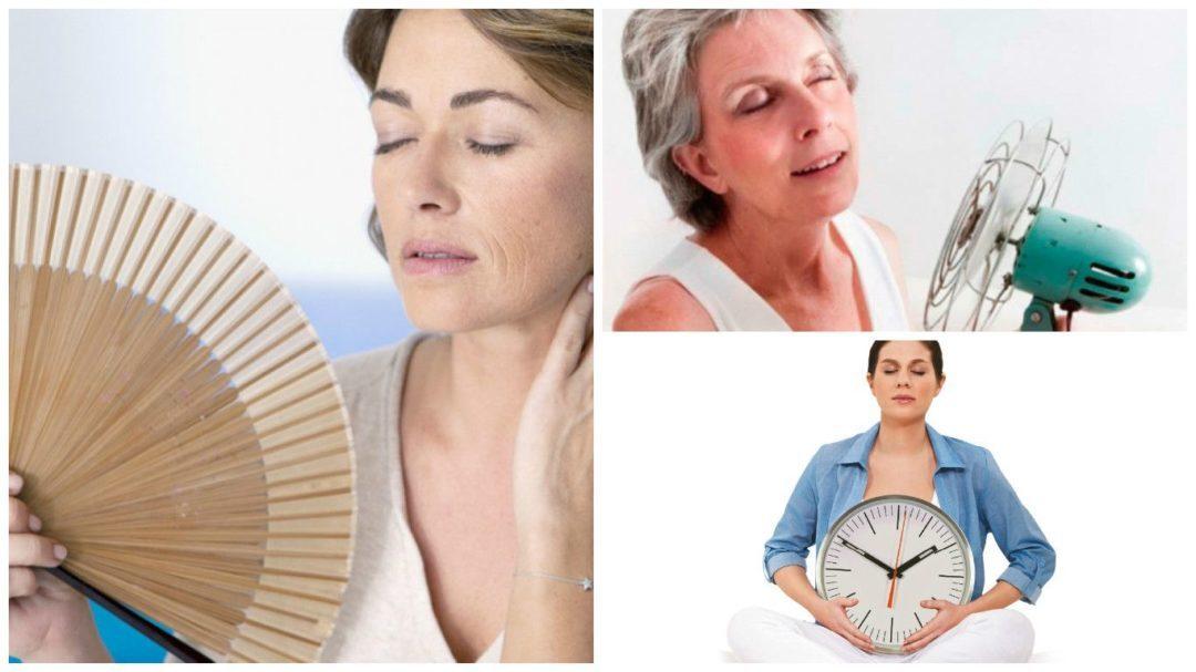 Algunas soluciones Naturales  Para aliviar la menopausia: