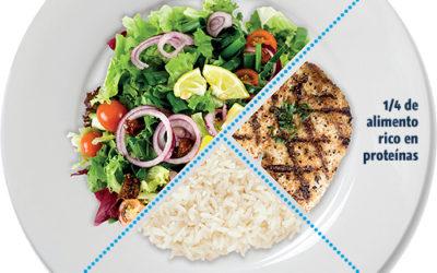 El Plato de Harvard para combatir el sobrepeso ganando salud