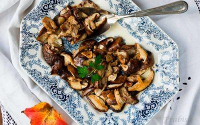 Beneficios para la Salud de los Hongos Shiitake o shitake (Lentinula edodes)